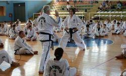 Fotos gentileza: Asociación Integral de Taekwon-Do